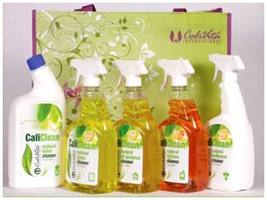 CaliClean - safe for human health and environmentally friendly household cleaners